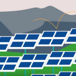 clean energy collective community solar news