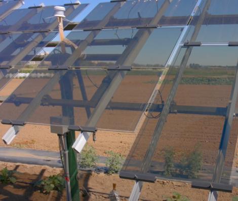 cadmium telluride solar panel for pv solar agrivoltaics solar farming